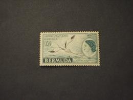 BERMUDA - 1953 REGINA/UCCELLO - NUOVO(++) - Bermuda