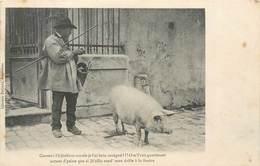 CPA Charente Coume I L'é Jholit Et Coume Je L'ai Bein Souégné Librairié Barraud - Foire Fouère Cochon Porc Paysan Marché - Angouleme