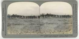 Photo Stéréoscopique - Troupes Belges, Flandres, Guerre 14/18, Charge à La Bayonette - Photos Stéréoscopiques