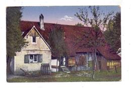 LANDWIRTSCHAFT - Bauernhaus Schierenhof Bei Wörth - Bauernhöfe