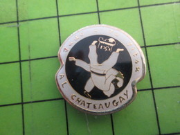 413c Pin's Pins : Rare Et Belle Qualité : THEME SPORTS / JUDO CLUB A.L. CHATEAUGAY  C'est Le Marais En Province Ce Chate - Judo