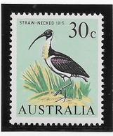 Australie N°334 -  Oiseaux - Neufs ** Sans Charnière - TB - 1966-79 Elizabeth II