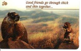 Marmote Animal Télécarte Phonecard (D 492) - Singapour