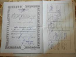 7a) GENOVA AZIONI IMMOBILIARE FALORIA CON CEDOLE 1974/83 - Azioni & Titoli