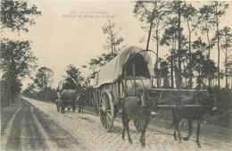 CPA 40 Dans Les Landes - Attelages De Mules Sur La Route - 2471 - - France