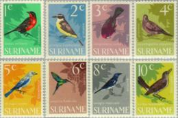 Suriname 1966 Vogels - Birds - NVPH 439 MNH** Postfris - Suriname ... - 1975