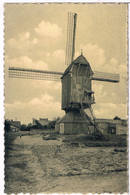 Lommel - Molen - Frans Van Hamstraat 1952  (2 Scan's) - Lommel