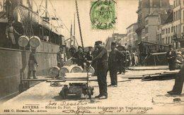 Anvers. Scenes Du Port. Debardeurs Dechargeant Un Transatlantique.   (antwerpen Dokwerkers Haven) - Antwerpen