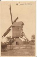 Lommel - Een Windmolen - Lommel