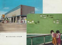 Enoshima Japan Aquarium, Interior View, Girls Look In Tank, C1960s Vintage Postcard - Other