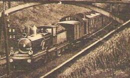 VALKENBURG Weg Naar De Kluis Binnenkomende Stoomtrein 1920 - Valkenburg
