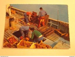 M754 - Bateau De Peche Débarquement Des Langoustes Crabe Dormeur Araignées  ( Editeur Editions Jean Audierne N° 20442 - Pêche