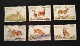 Antillen - Wereld Natuurfonds / World Wild Life Nrs. 996/999 + LP89/90 (1992) - Antilles