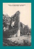 16 Vibrac Prés Chateauneuf Sur Charente Ruine Du Chateau - Chateauneuf Sur Charente