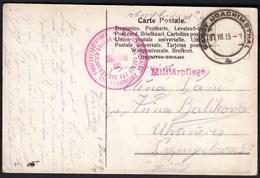 Sanct Joachimsthal 1915 / Red Cross / Art, Paintings / Swan, Schwan / Handgemalt, Hand Painted / Card - Croce Rossa