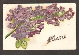 Belle Carte Fantaisie , Prénom : MARIE - Prénoms