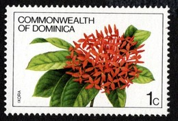 Dominica - Scott #716 MH - Dominica (1978-...)