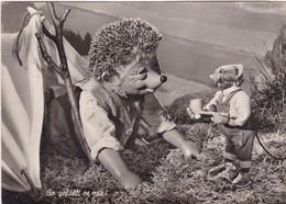 MECKI. SOGEFALLT ES MIR! AUGUST GUNKEL, ECHT FOTO. CIRCULEE  1958 GERMANY A ARGENTINE. STAMP A PAIR-BLEUP - Mecki