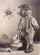 MECKI. EINE SPINNT IMMER! AUGUST GUNKEL, ECHT FOTO. CIRCULEE 1958 GERMANY A ARGENTINE -BLEUP - Mecki