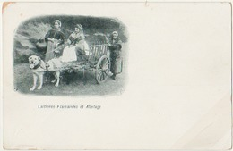 LOT 9 - VILLES ET VILLAGES DE FRANCE - 36 Cartes Anciennes Dont 11 De Suresnes - Cartes Postales