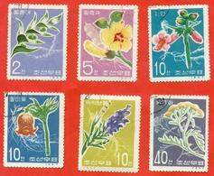 Flowers. Medicinal Plants. North Korea 1967. Complete Series.Used Stamp. - 1948-.... Republics