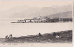 CORSE - SAINT-FLORENT - VUE GÉNÉRALE - N° 19 - LL - Calvi
