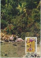 Rép. Dominicaine Carte Maximum Oiseau 1984 Flamant Rose 934 - Dominicaine (République)