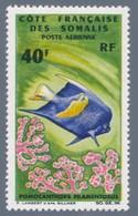 COSTA FRANCESE DEI SOMALI 1966 FAUNA MARINA - Francobolli
