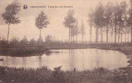 Kampenhout: Vijver Der Villa Everaert. - Kampenhout