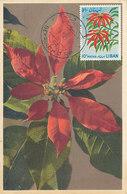 D35726 CARTE MAXIMUM CARD 1965 LEBANON - POINSETTIA CP ORIGINAL - Libano