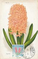 D35727 CARTE MAXIMUM CARD 1964 LEBANON - HYACINTH CP VINTAGE ORIGINAL - Libano