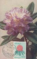 D35728 CARTE MAXIMUM CARD 1965 LEBANON - RHODONDENDRON CP VINTAGE ORIGINAL - Libano