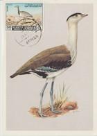 Jordanie Carte Maximum Oiseau 1968 Yv 575 - Jordan