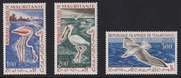 MAURITANIA 1961 UCCELLI - Mauritania (1960-...)