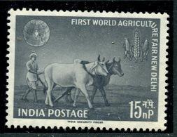 Inde  1959 Y&T 115 ** - 1950-59 République