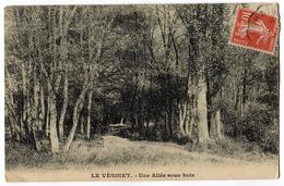 CPA 78 LE VESINET Allée Sous Bois - Le Vésinet