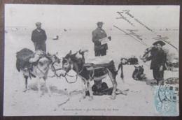 France - CPA Malo-Les-Bains - La Promenade Des Ânes - Carte Précurseur Animée, Circulée En 1905 - France