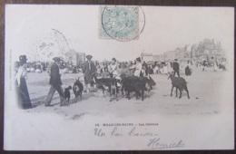 France - CPA Malo-Les-Bains - Les Chèvres - Carte Précurseur Très Animée, Circulée En 1906 - France