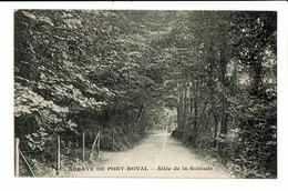 CPA - Cartes Postales -Jamaïque - Abbaye De Port Royal - Allée De La Sollitude S3603 - Cartes Postales