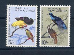 Papouasie & Nouvelle Guinée  :  Yv  71-72  **  Oiseau - Bird - Papouasie-Nouvelle-Guinée