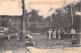 Afrique Occidentale CÔTE D'IVOIRE Dans La Forêt Chantier D'abattage D'acajou (Collection Générale Fortier 853)*PRIX FIXE - Côte-d'Ivoire