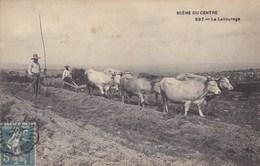 Charente - Scène Du Centre - Le Labourage - Autres Communes