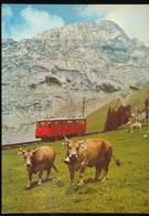 Pilatus , Eselwand - Eisenbahnen