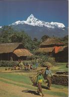 BHIM RATNA HASHA RATNA - Népal