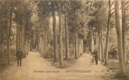 Pays-Bas - Beetsterzwaag 1930 - Pays-Bas