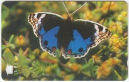 OMAN A-523 Magnetic Telecom - Animal, Butterfly - 34OMNV - Used - Oman