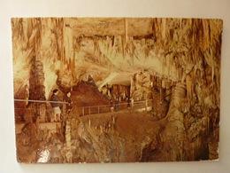 POSTOJNSKA JAMA - Grotte - Caves - La Grotte Belle - Adelsberg - Slovénie