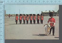 CPM - Canada Quebec - Mascotte Et Changement De Garde La Citadelle Used In 1971 + Stamp - Uniformes