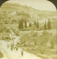 Israel Palestine Jerusalem Jardins De Gethsémani Pont De Cedron Ancienne Photo Stereo 1900 - Stereoscopic