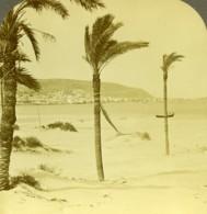 Israel Palestine Haifa Caiffa Et Le Mont Carmel Ancienne Photo Stereo 1900 - Stereoscopic